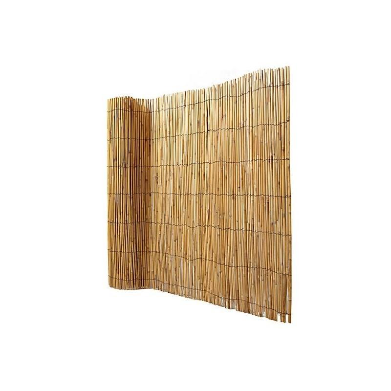 Canisse Bambou C Est Quoi Sa Fonction